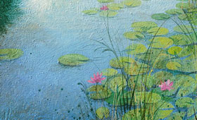 <b>Water lilies in the river </b>