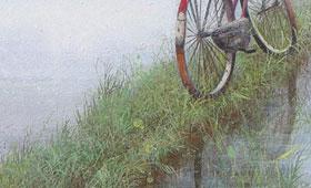 <b>Bicicleta</b>