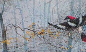 <b>Bird in the forest</b>