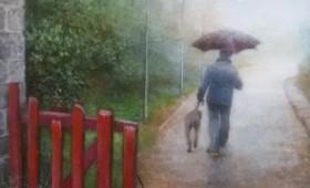 <b>Stroller with dog</b>