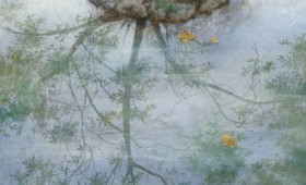 <b>Reflections in the pond</b>